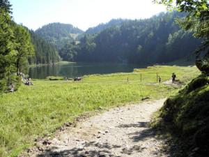 Taubensee
